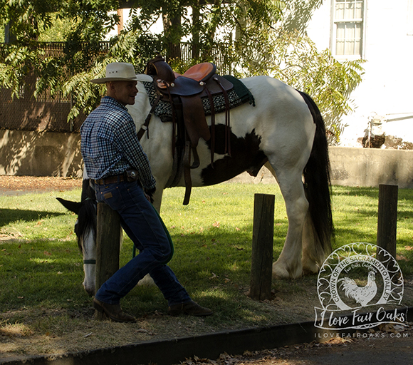 a man and his horse fair oaks california